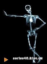 Skeleton | 240*320