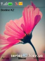 Flower by MadiyarM 240*320