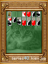 Kitten Solitaire | 240*320